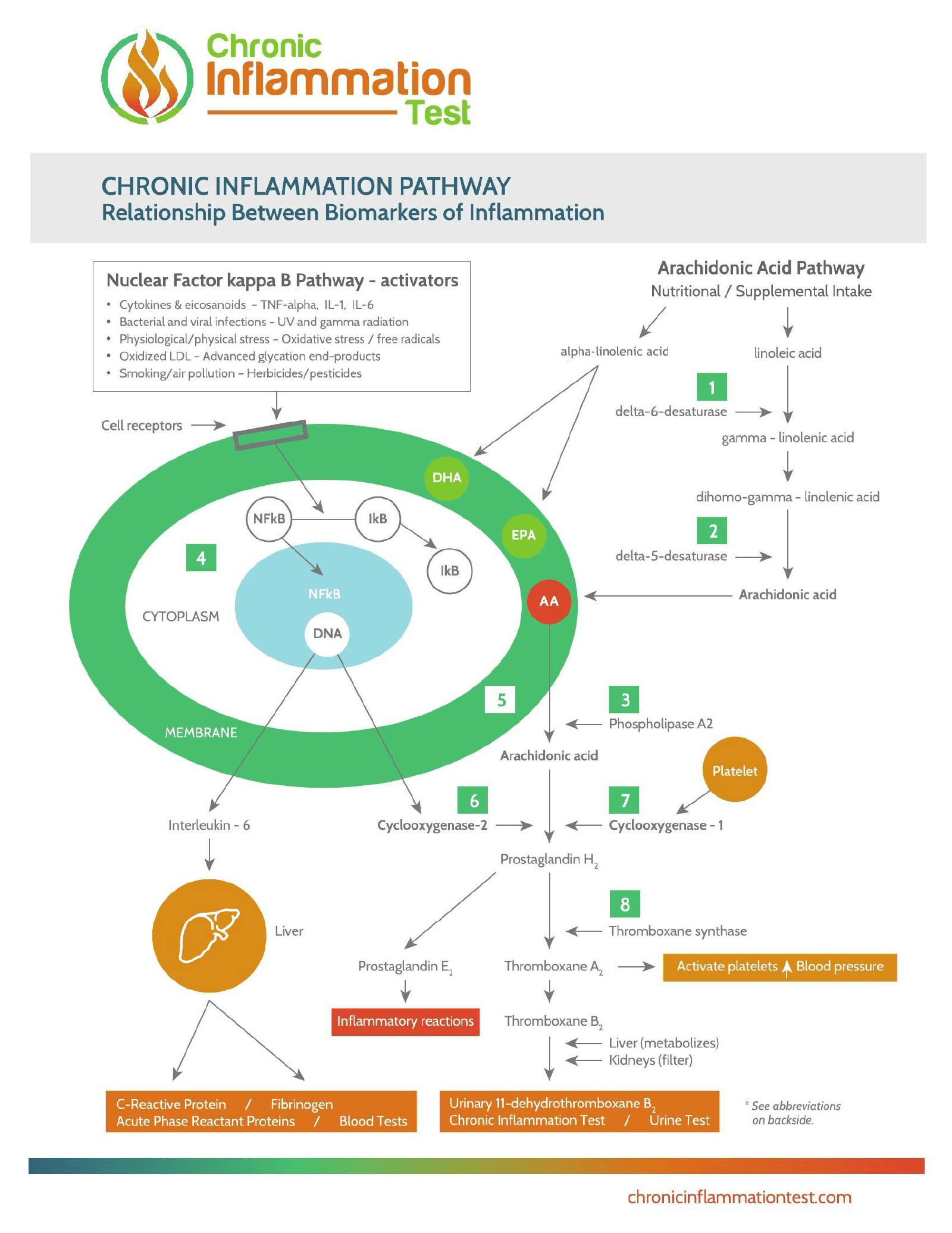 biomarker-schematics.png
